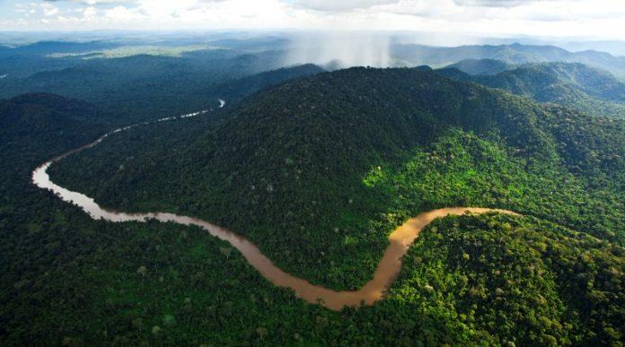 Floresta Nacional de Carajás
